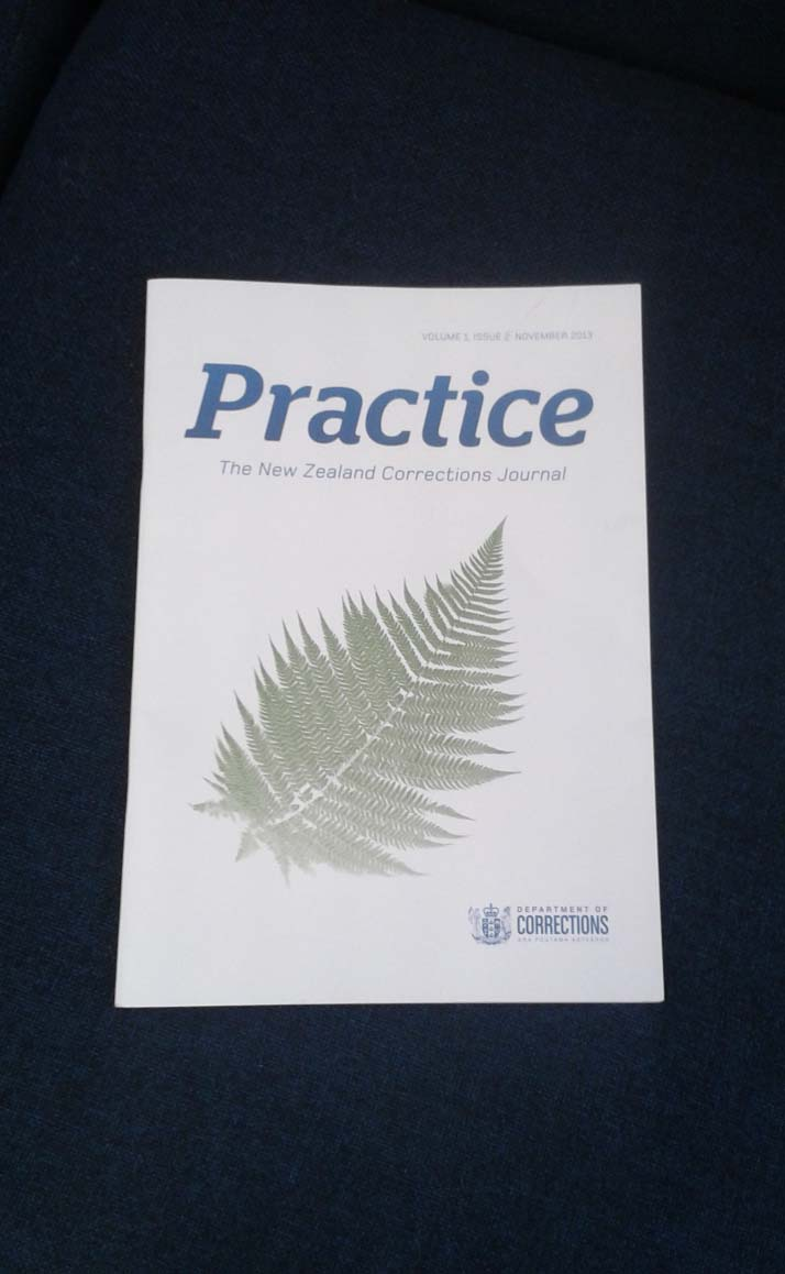 Practice, the Corrections Journal