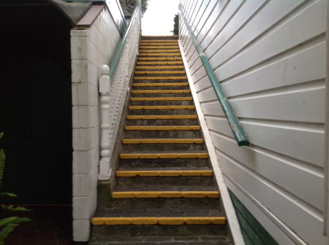 Thw edges of the steps at Corban Estate Arts Centre were painted to make them safer